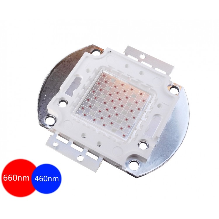 Светодиод 50Вт (660+460nm) двойной спектр